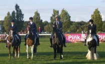 Senior Novice Dressage Team 2011